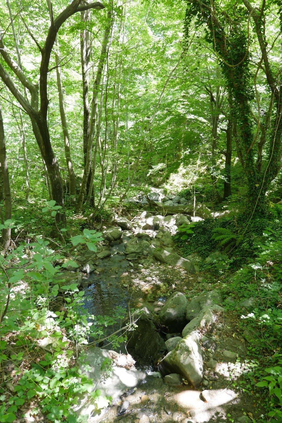 Randonnée dans les montagnes-Radici-Pauline&Olivier