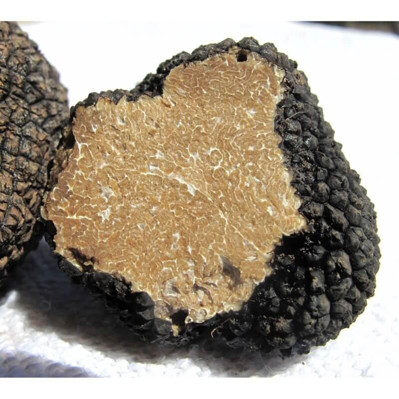 Truffes d'Eté - Truffes&Co