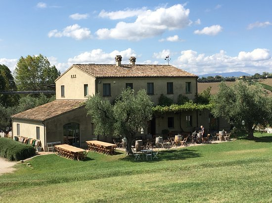 Azienda Agraria Guerrieri - Pauline&Olivier